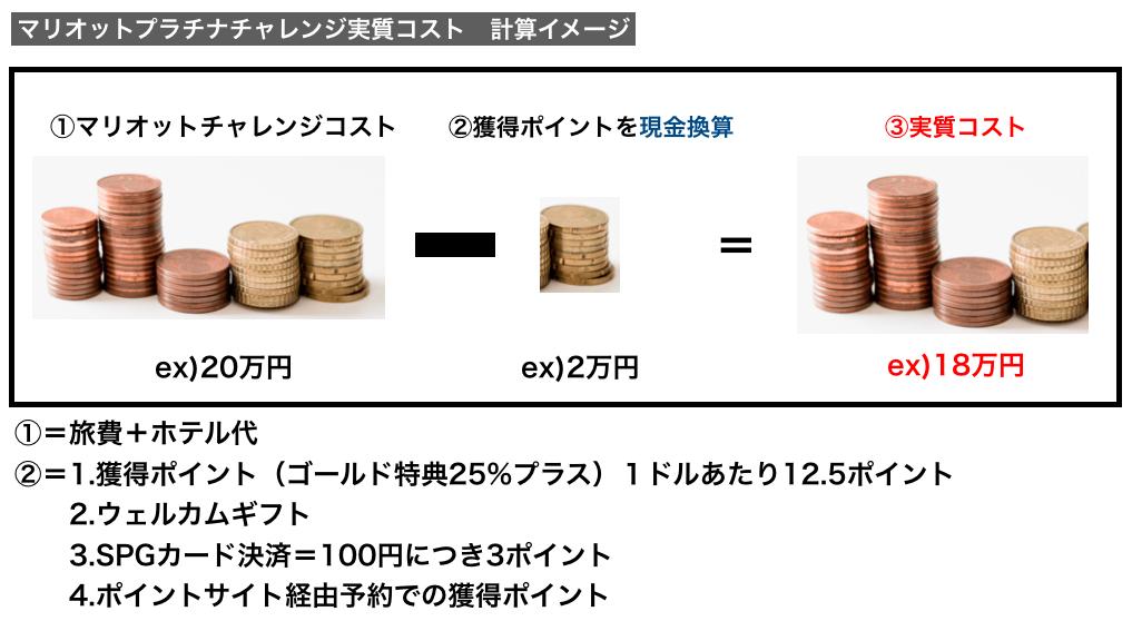 実質コスト計算概要図