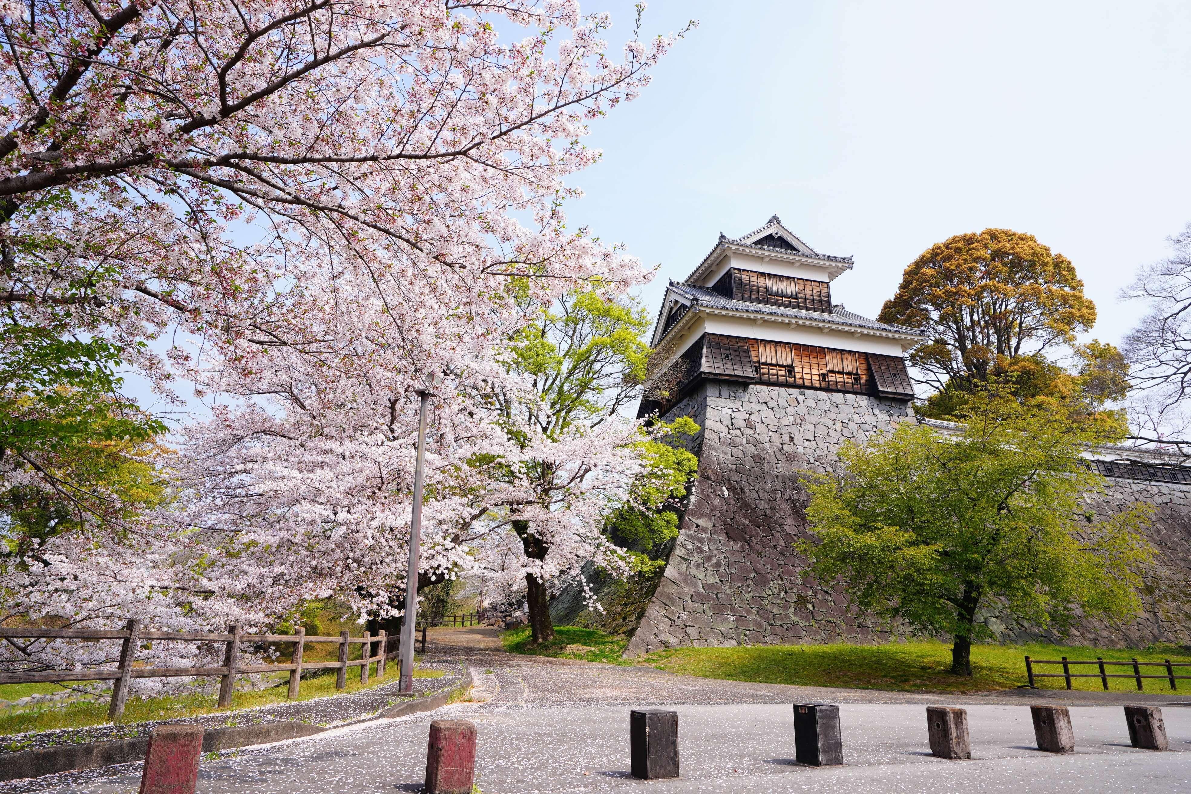 熊本出張。熊本城。アイキャッチ。